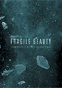 Graphics - Catalogue - Fragile Beauty @ Marco Polo Glass Gallery - Murano (VE)